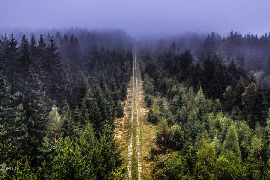 Kolonnenweg am Rennsteig